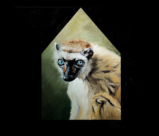 Blue-Eyed Lemur House