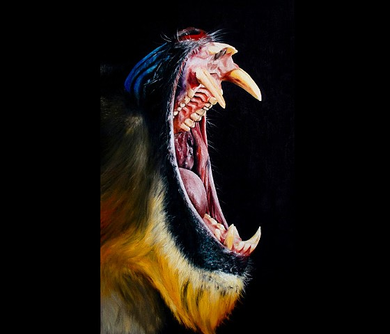 Mandrill Mouth