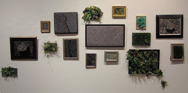 """""""Landscape Studies"""" installed at """"The Ground Beneath My Feet"""" solo show at Eastern Michigan University, April 2011"""