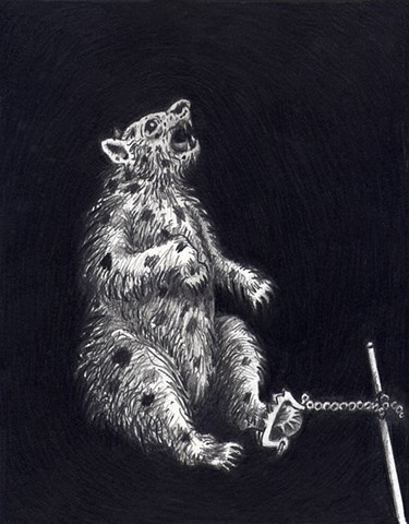 The Three Bears: Tortured