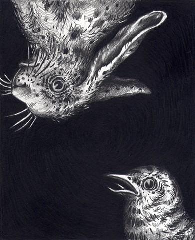 Bird and Bunny