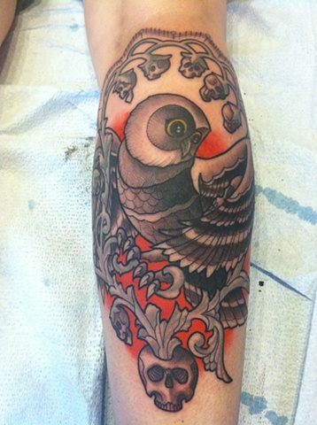Ivy's owl