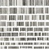 Bar Codes (by descending height)