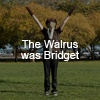 The Walrus Was Bridget