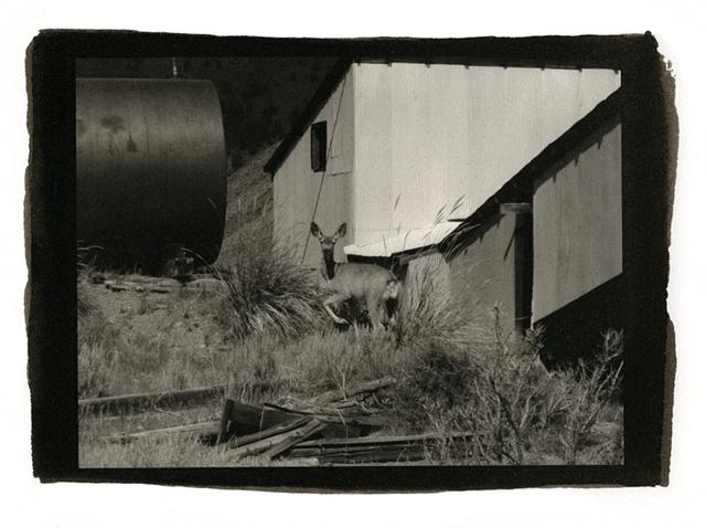 Abandoned Mine Outside Stanley, Idaho