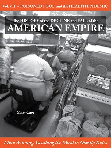 The History of the Decline and Fall of the American Empire VII