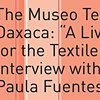 Interview with Ana Paula Fuentes