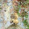 Taken (Detail 2)