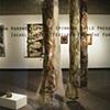 Laurentian Forests Installation