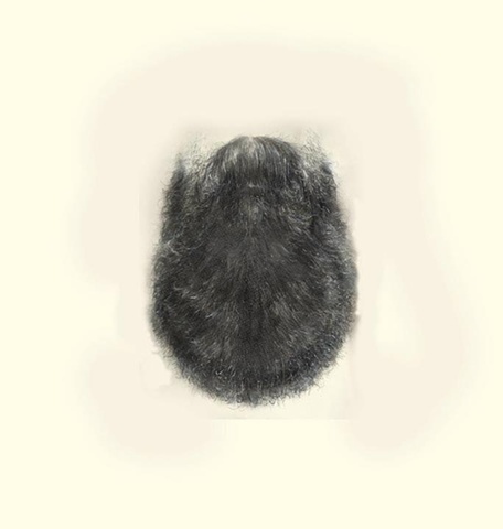 beard drawing contemporary