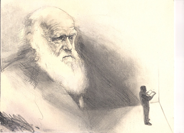 Illustration for Charles Darwin article