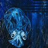 Googly Eyed Glass Squid
