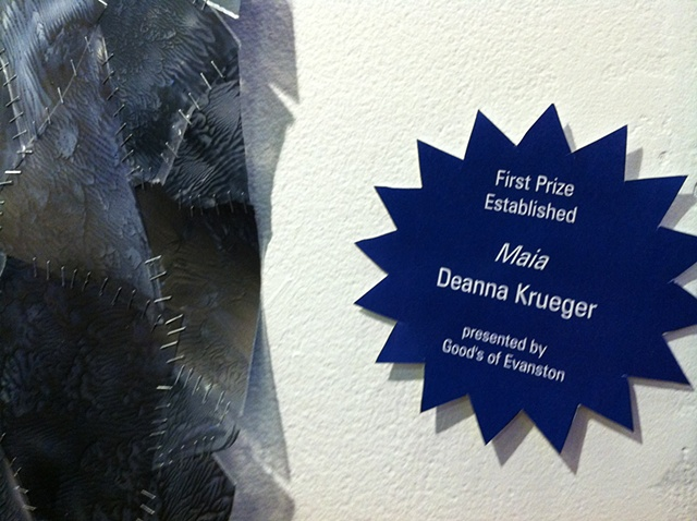 Maia First Place Award in Established Category