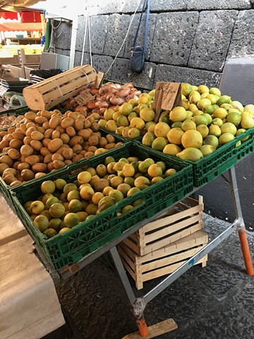at 7.05am: getting the lemons