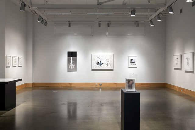 Installation Shot