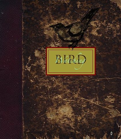 """Bird Watching"" Cover"