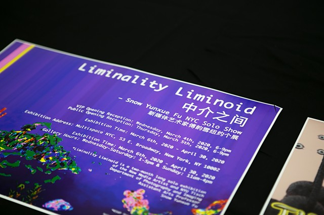 Liminality Liminoid Installation View