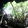 Inside of a bat cave
