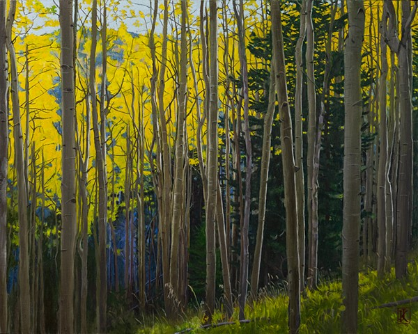 Morning, Aspens in Autumn