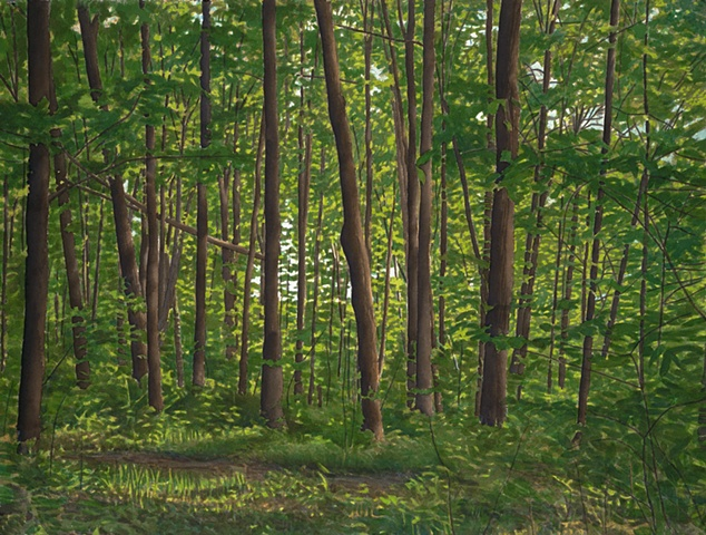 landscape watercolor of Vermont maple forest