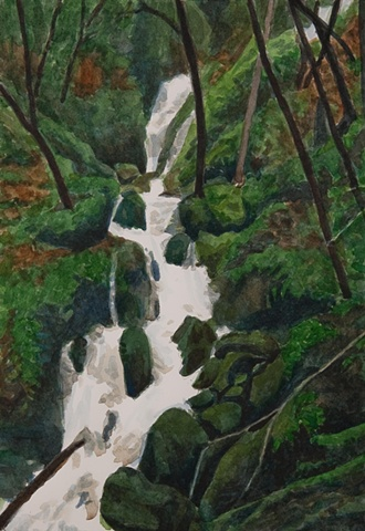 study for cataract falls