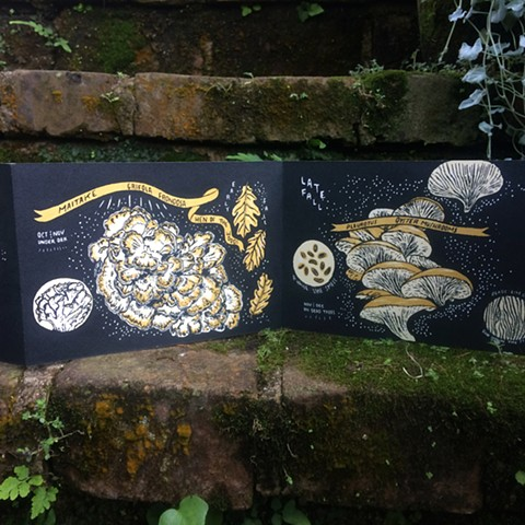 fungicopia silkscreen book exploring edible fungi