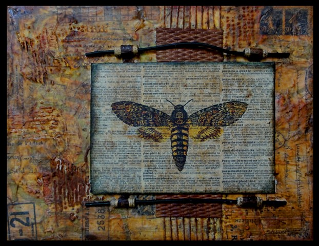 Mixed Media, patagonia, ventura, recycled, fluid, assemblage, collage, ink, botanical, textile, eco printing
