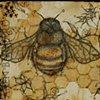 """Bee Mindful"""