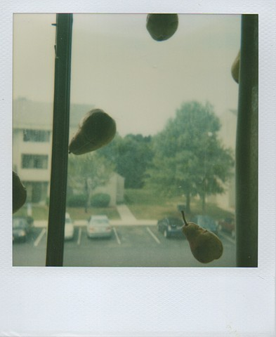 Polaroid Installations