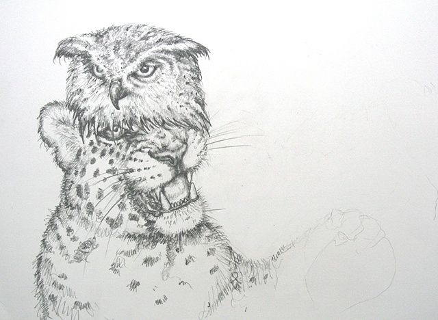 An Owl is a Leopard's Combover