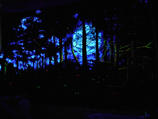 Forest Mural, black light paints (over acrylic on canvas)