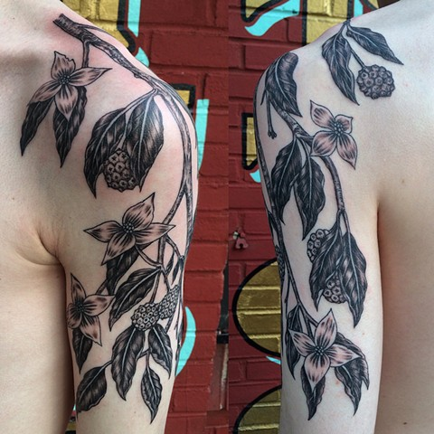 dogwood tattoo, leta gray tattoo, leta lou tattoo, leta gray, botanical tattoo, leta, plant tattoo