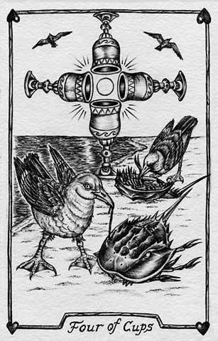 Four of cups, seagulls, horseshoe crab, water, beach ocean, nature tarot, gray tarot