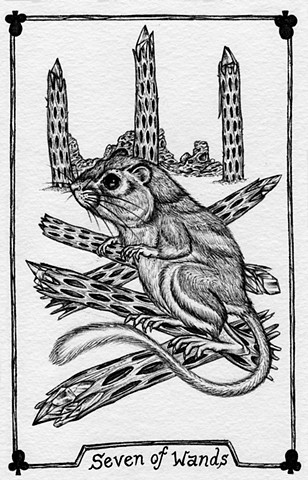 Gray Tarot, leta gray, nature tarot, animal tarot, desert animal, kangaroo mouse