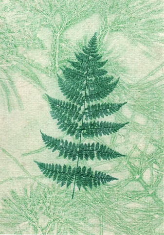 Lady Fern on Lace
