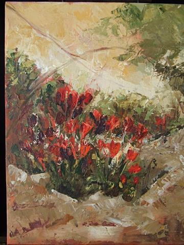 Tulip's in Santa Barbara, CA
