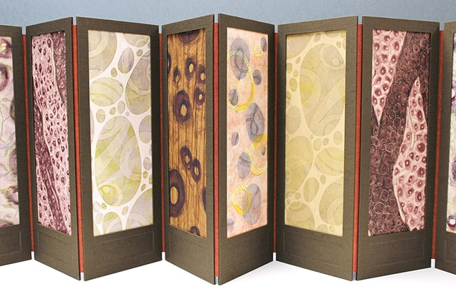 Proliferation is an accordion-style structure and inspired by both William Morris's screens and microscopic images of cells. Each panel is constructed of two cloth covered panels, one with a window and the other serves as substrate to a mixed media print,