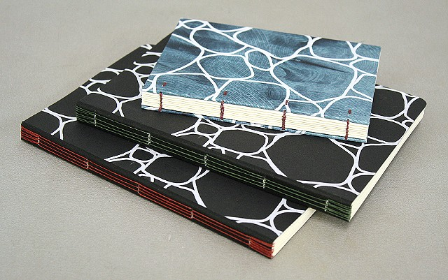 Screenprinted cells - Long and Link stitch bindings