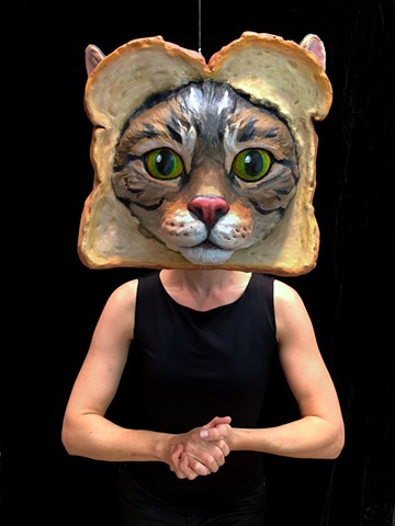 Toast Cat in the Studio