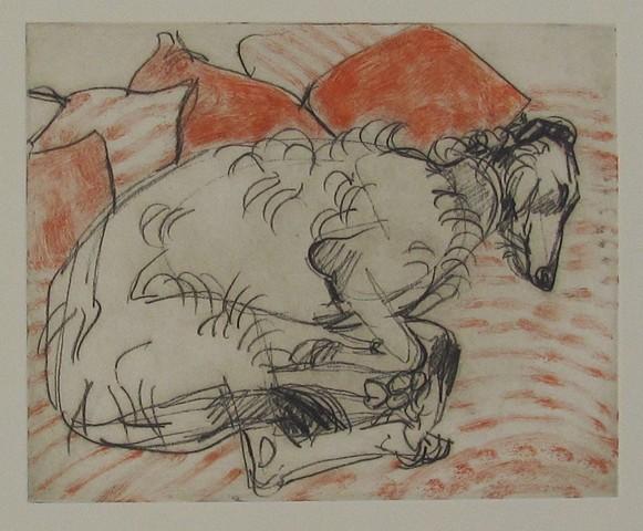 Deerhound with Pillows