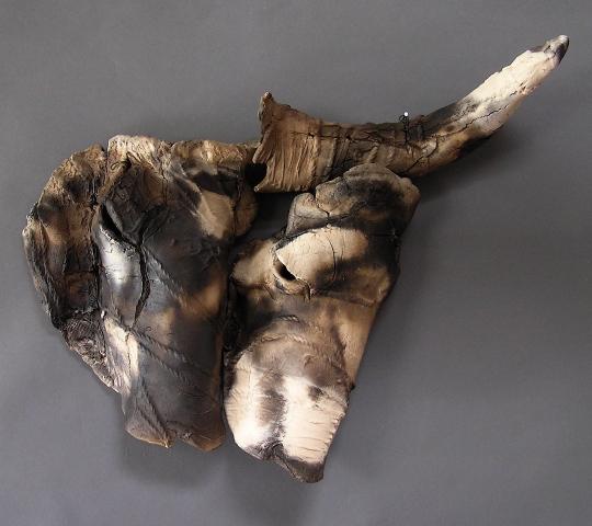 Congo Buffalo Pair, Single Horn