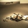 Fallen Sable #4