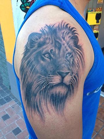 Lion portrait-2