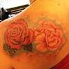 Rose/Pione flower