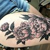 Peony flower black and grey