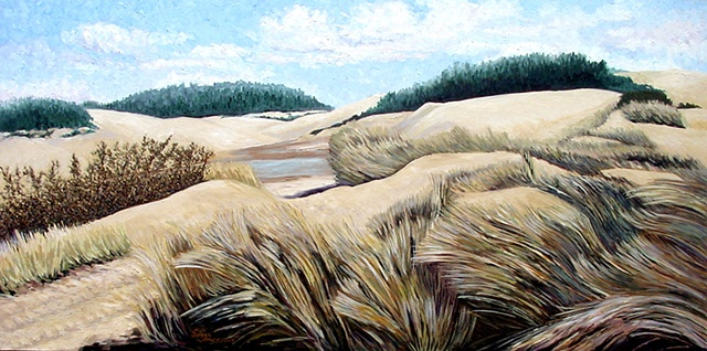 A landscape of the dunes near Reedsport Oregon in the early Spring.