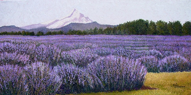 A lavender Farm in Hood River, Oregon, with Mt. Hood in the background