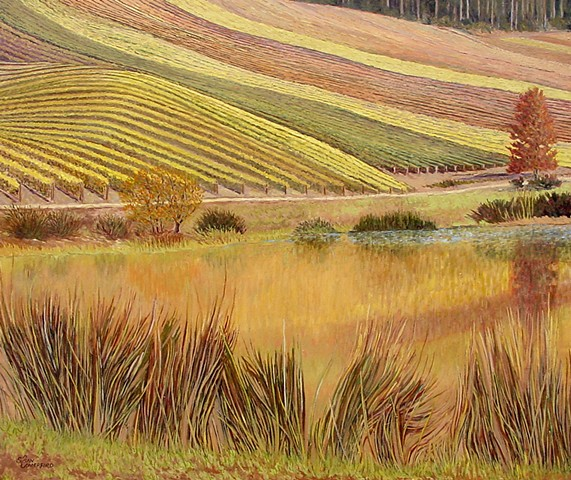 A vinyard in full Fall color on rolling hills in Douglas County OR