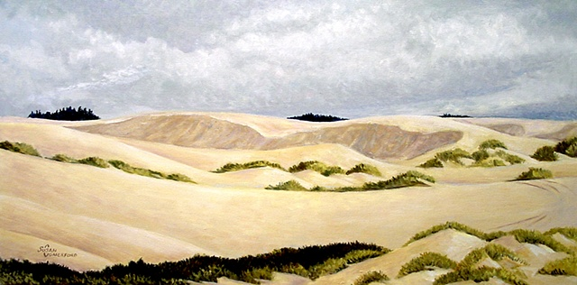 A landscape of the Dunes near Reedsport Oregon.