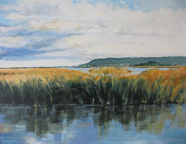 Sandy Hook Wetlands I
